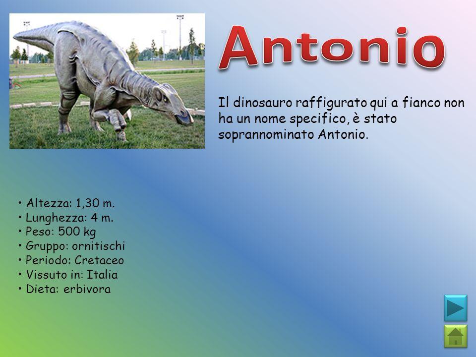 Antonio Il dinosauro raffigurato qui a fianco non ha un nome specifico, è stato soprannominato Antonio.