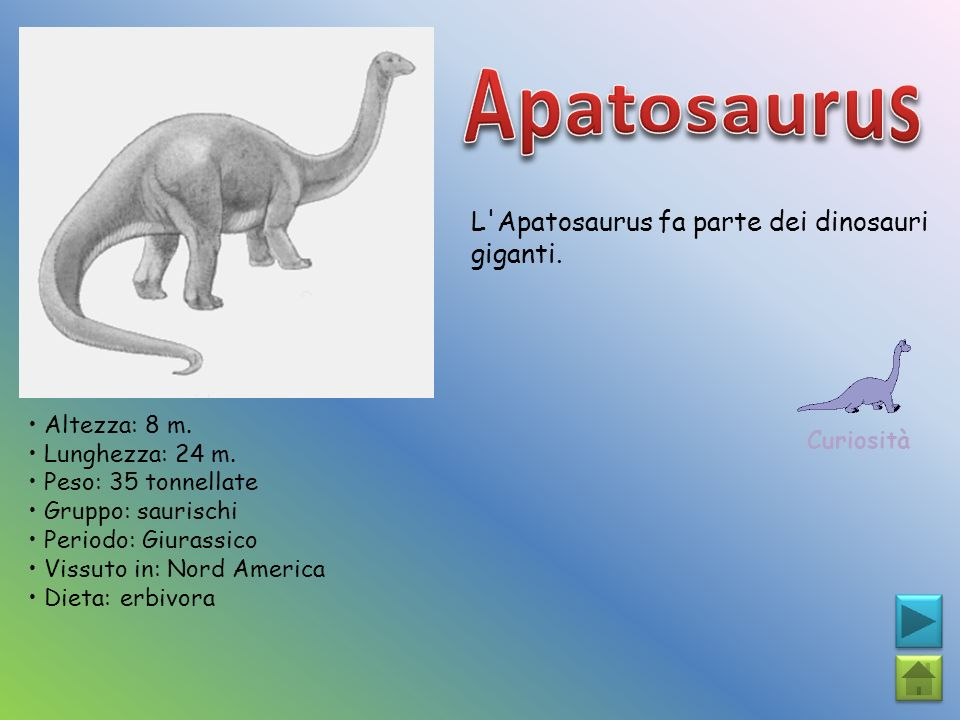 Apatosaurus L Apatosaurus fa parte dei dinosauri giganti.