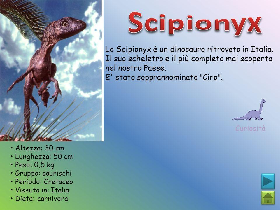 Scipionyx Lo Scipionyx è un dinosauro ritrovato in Italia.