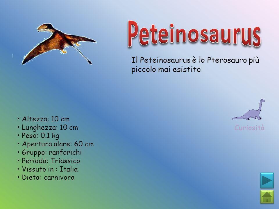 Peteinosaurus Il Peteinosaurus è lo Pterosauro più piccolo mai esistito. Curiosità. • Altezza: 10 cm.