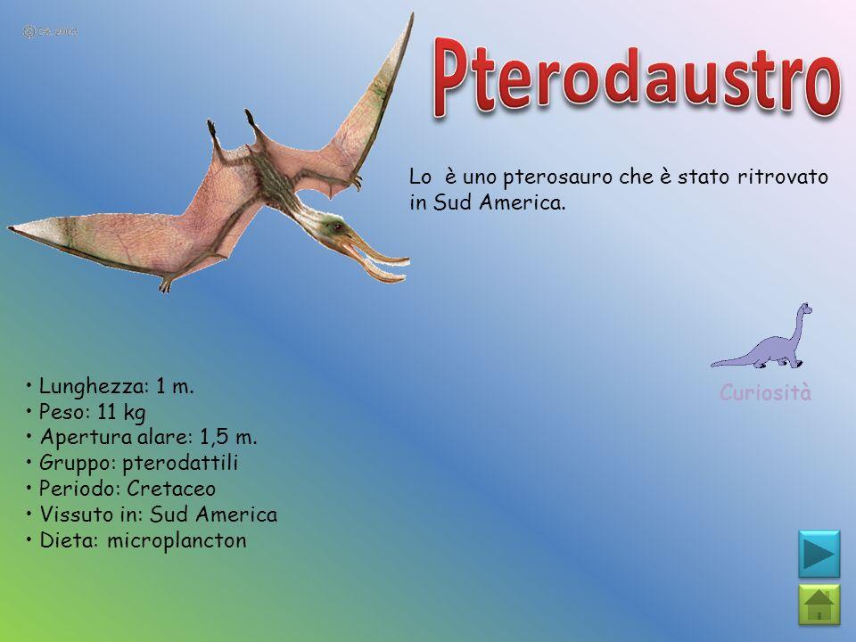 Pterodaustro Lo è uno pterosauro che è stato ritrovato in Sud America.