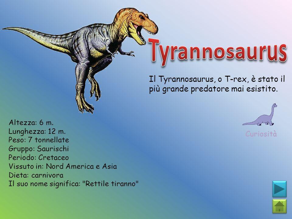 Tyrannosaurus Il Tyrannosaurus, o T-rex, è stato il più grande predatore mai esistito. Curiosità. Altezza: 6 m.