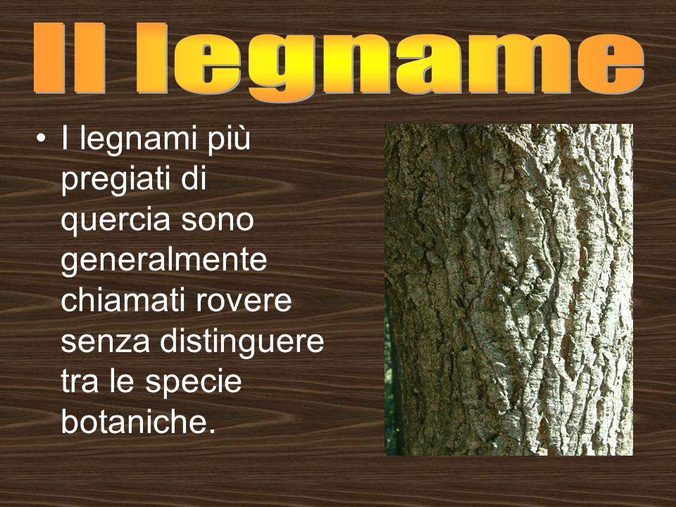Il legname I legnami più pregiati di quercia sono generalmente chiamati rovere senza distinguere tra le specie botaniche.