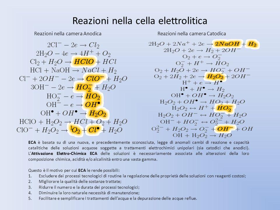 Reazioni nella cella elettrolitica