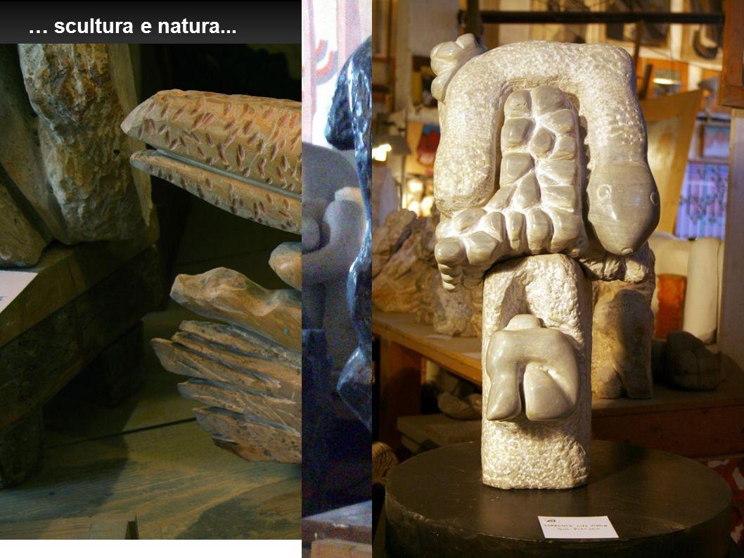 … scultura e natura...