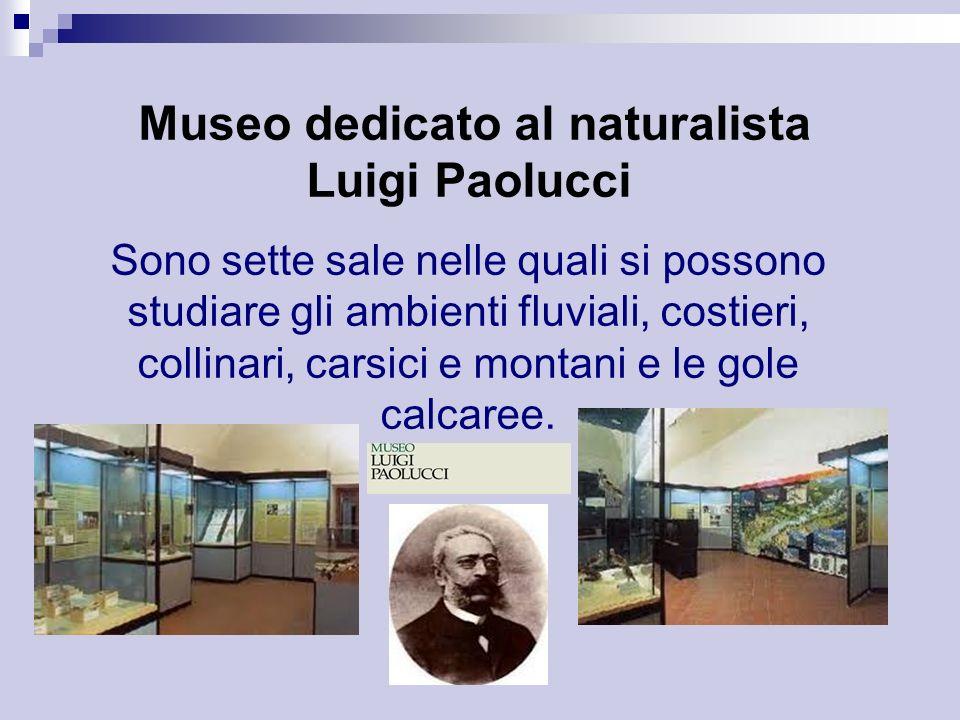 Museo dedicato al naturalista Luigi Paolucci