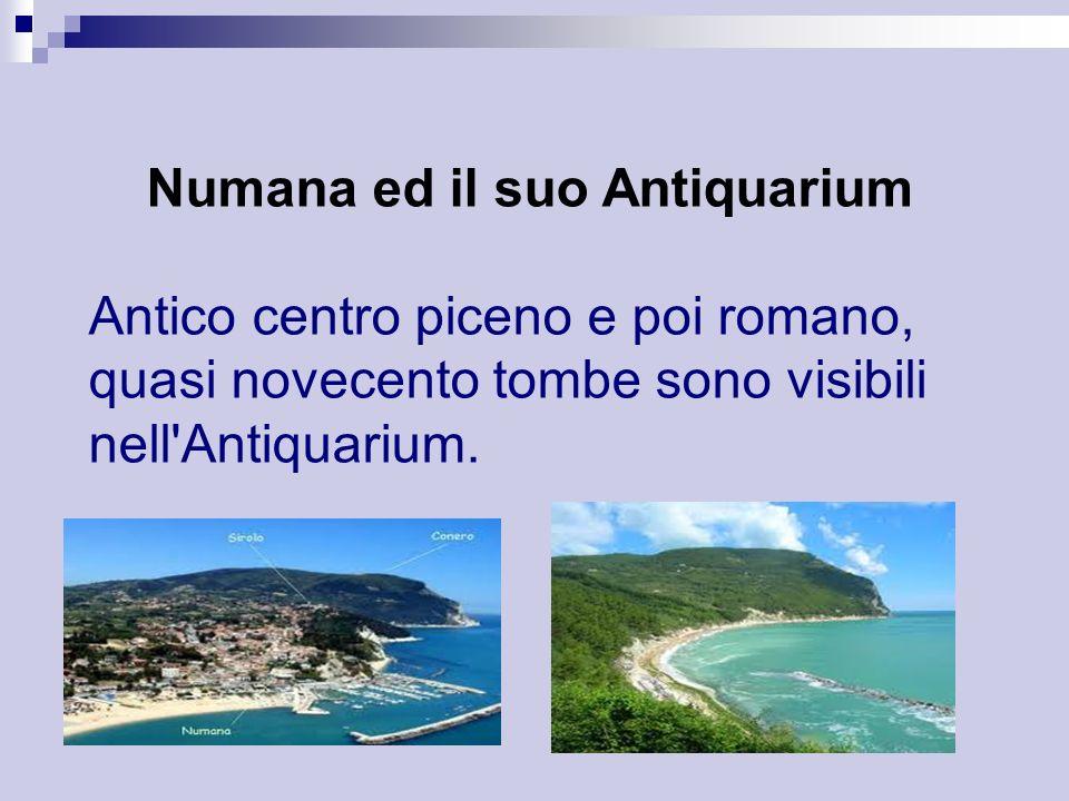 Numana ed il suo Antiquarium