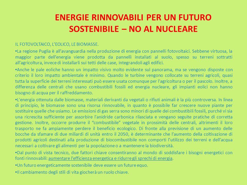 ENERGIE RINNOVABILI PER UN FUTURO SOSTENIBILE – NO AL NUCLEARE
