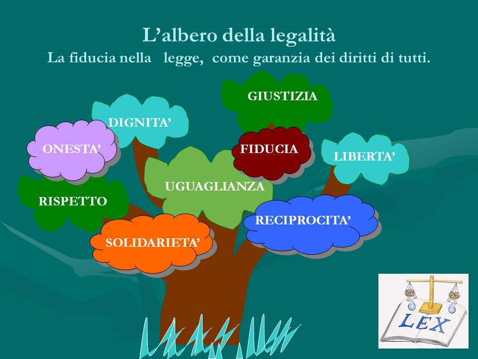 L'albero della legalità La fiducia nella legge, come garanzia dei diritti di tutti.