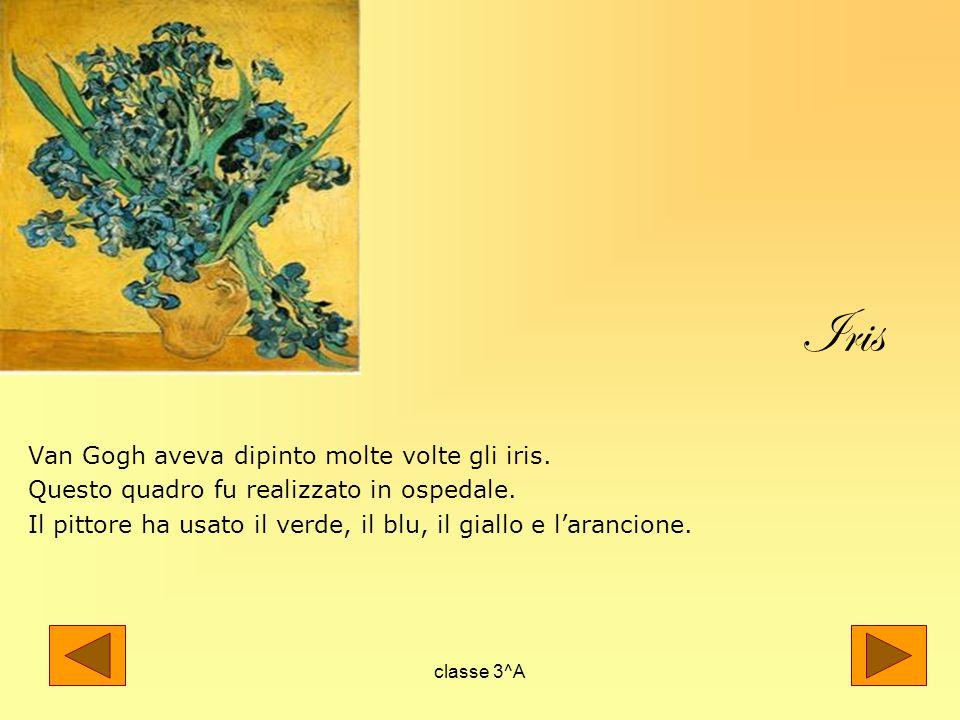 Iris Van Gogh aveva dipinto molte volte gli iris.