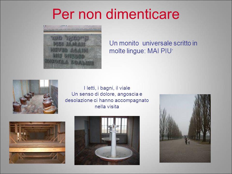 Per non dimenticare Un monito universale scritto in molte lingue: MAI PIU' I letti, i bagni, il viale.