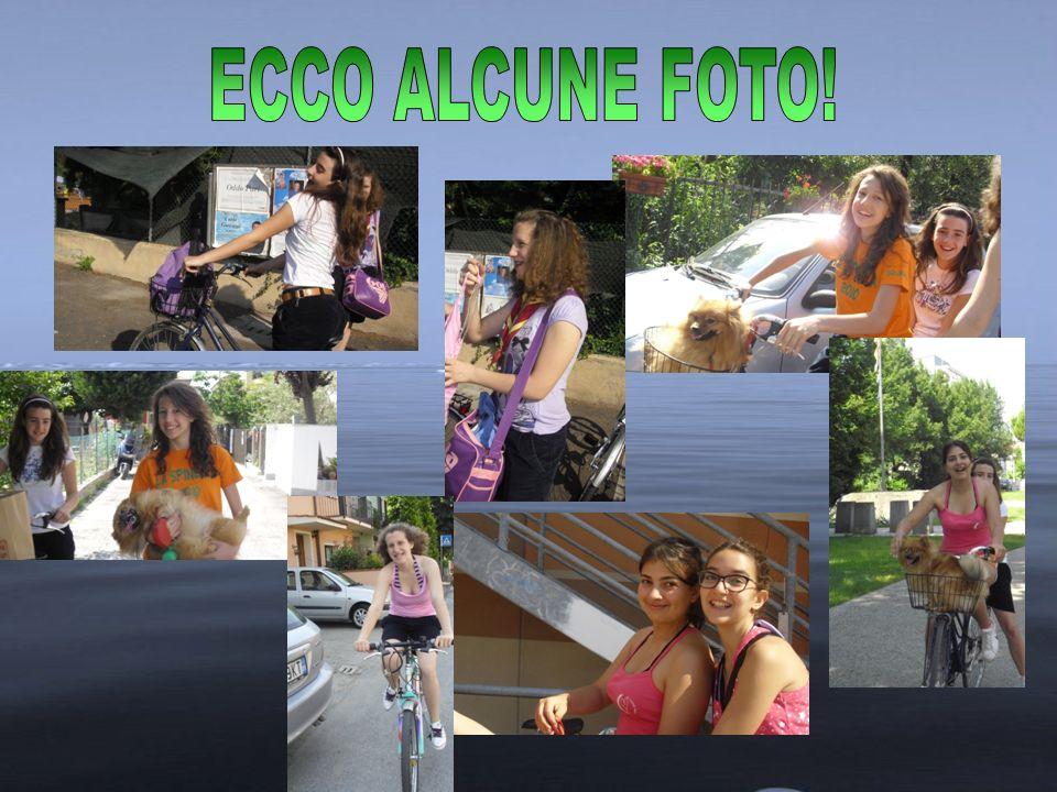 ECCO ALCUNE FOTO!