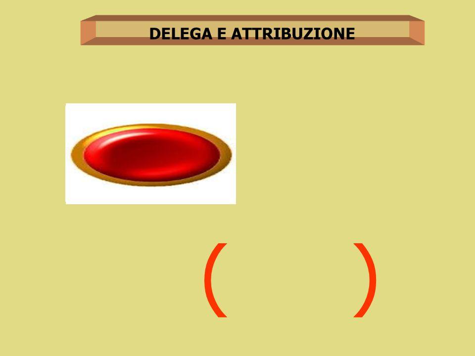 DELEGA E ATTRIBUZIONE ( )