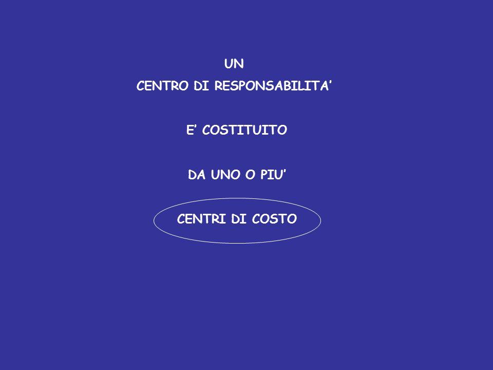 CENTRO DI RESPONSABILITA'