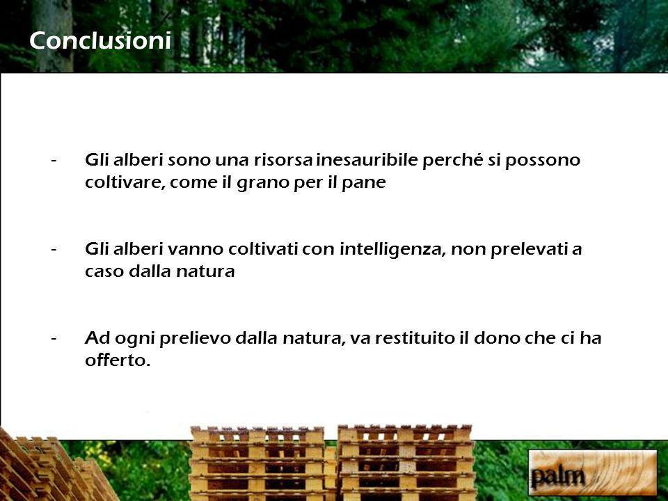 Conclusioni Gli alberi sono una risorsa inesauribile perché si possono coltivare, come il grano per il pane.
