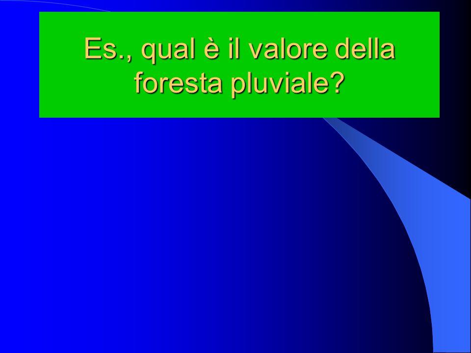 Es., qual è il valore della foresta pluviale