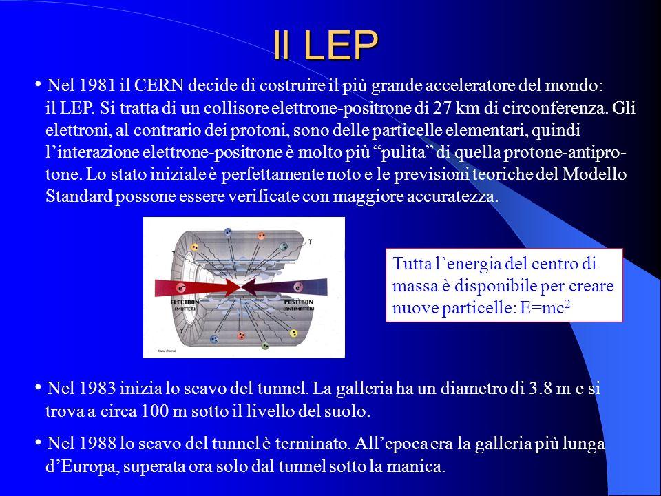 Il LEP Nel 1981 il CERN decide di costruire il più grande acceleratore del mondo: