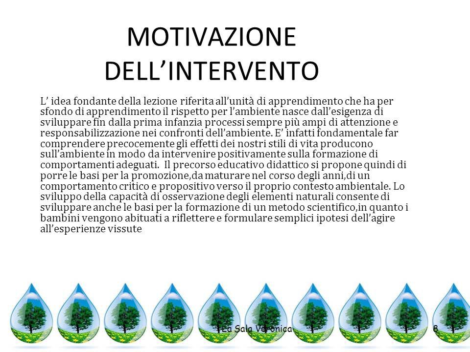 MOTIVAZIONE DELL'INTERVENTO