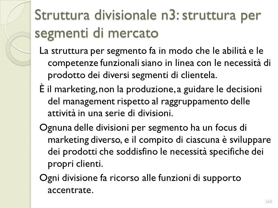 Struttura divisionale n3: struttura per segmenti di mercato