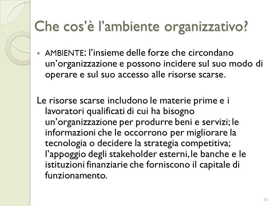 Che cos'è l'ambiente organizzativo