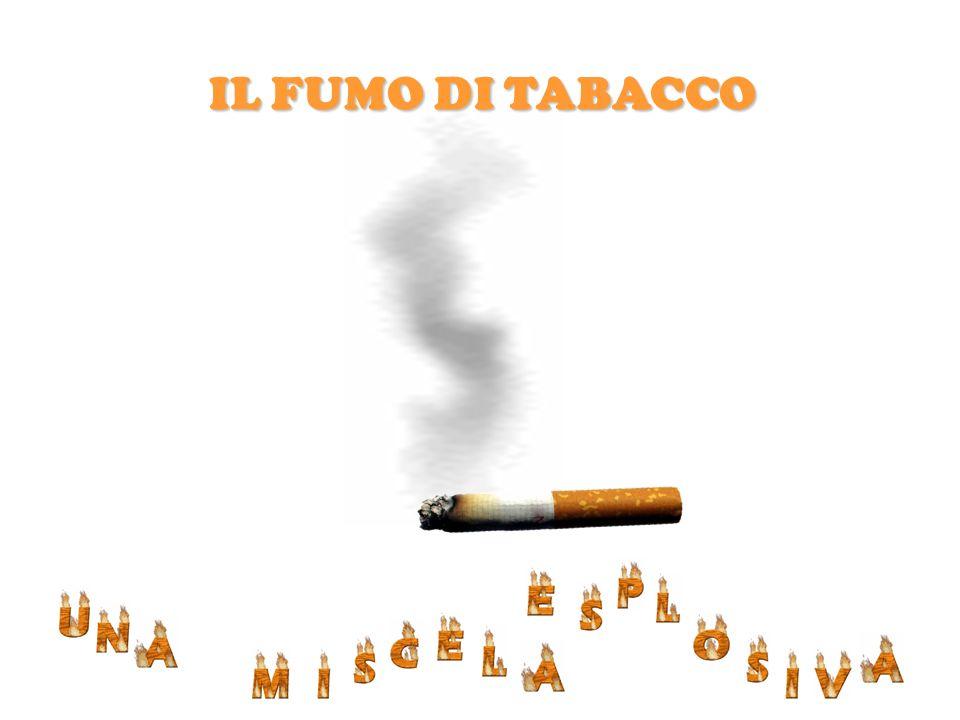 IL FUMO DI TABACCO BENZO - a - PIRENE OSSIDO NITRICO N-NITROSAMINE