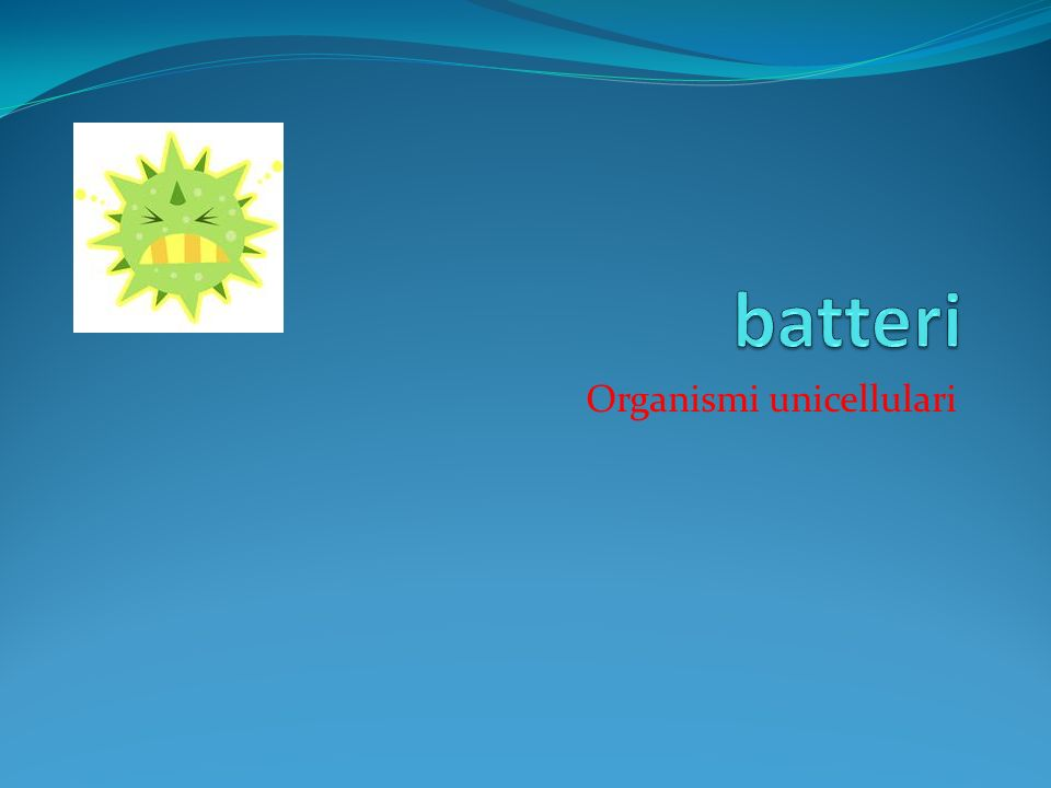 Organismi unicellulari