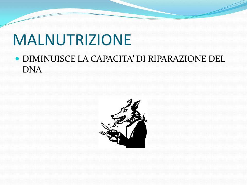 MALNUTRIZIONE DIMINUISCE LA CAPACITA' DI RIPARAZIONE DEL DNA