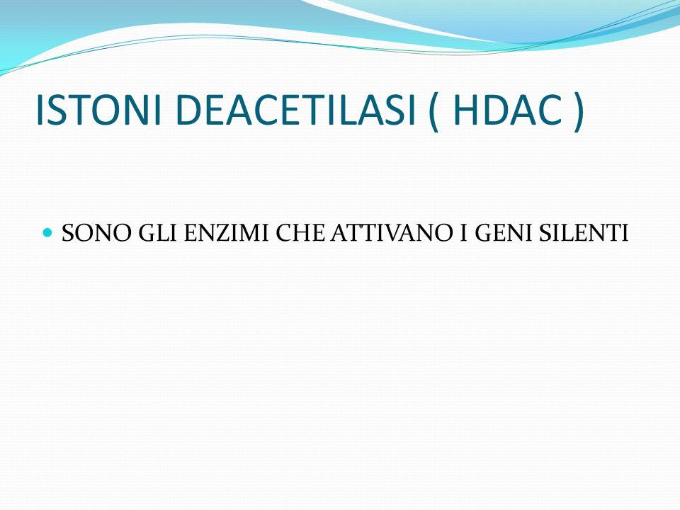 ISTONI DEACETILASI ( HDAC )