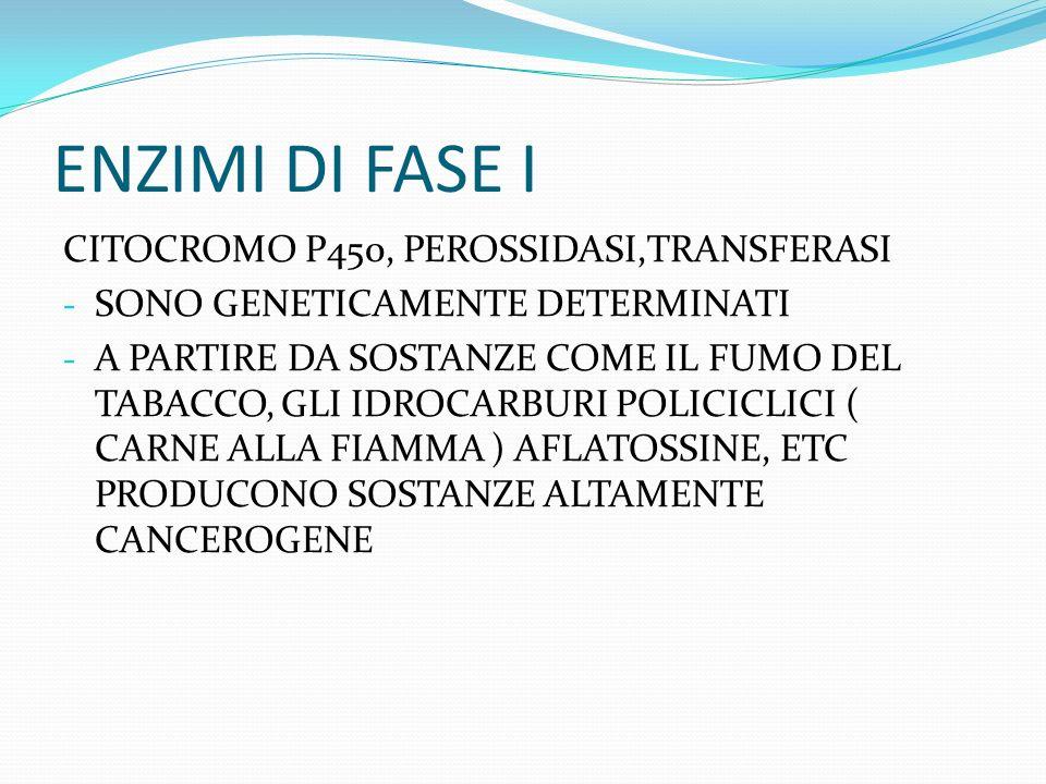ENZIMI DI FASE I CITOCROMO P450, PEROSSIDASI,TRANSFERASI