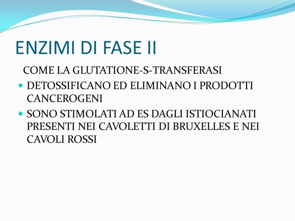 ENZIMI DI FASE II COME LA GLUTATIONE-S-TRANSFERASI