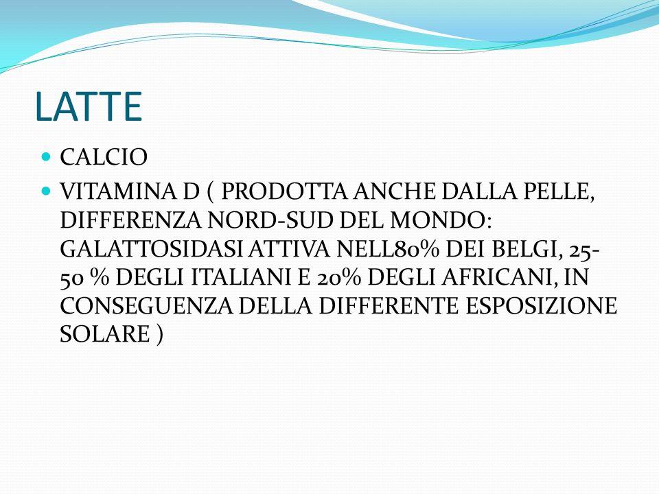 LATTE CALCIO.