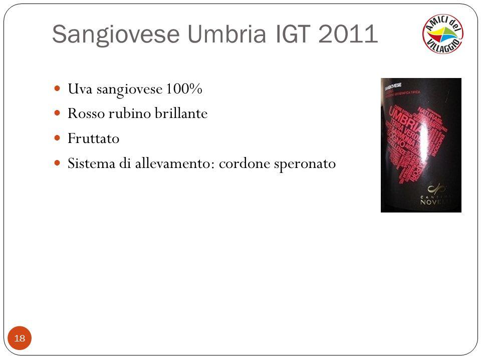 Sangiovese Umbria IGT 2011 Uva sangiovese 100% Rosso rubino brillante