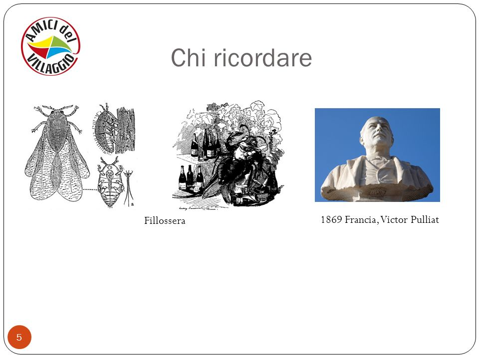 Chi ricordare Fillossera 1869 Francia, Victor Pulliat