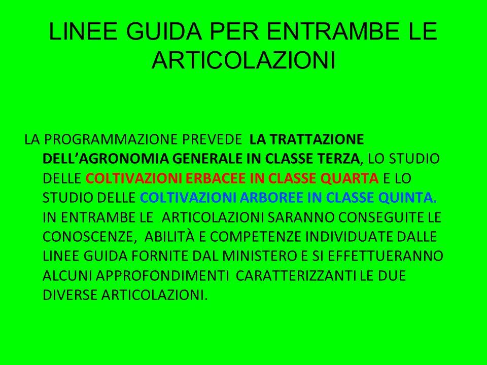 LINEE GUIDA PER ENTRAMBE LE ARTICOLAZIONI