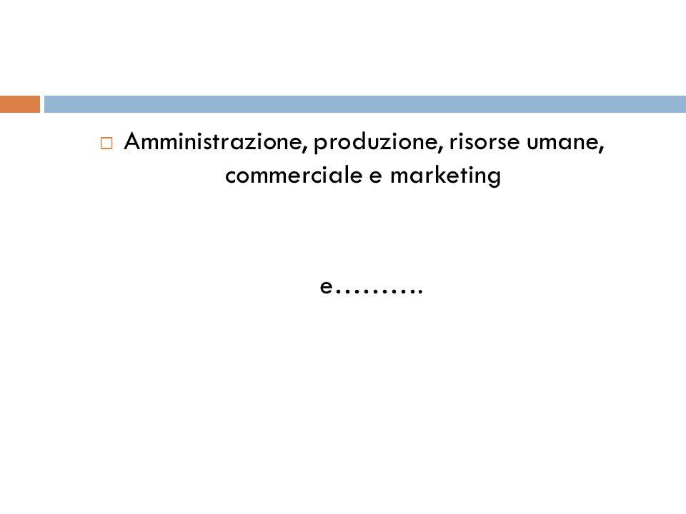 Amministrazione, produzione, risorse umane, commerciale e marketing