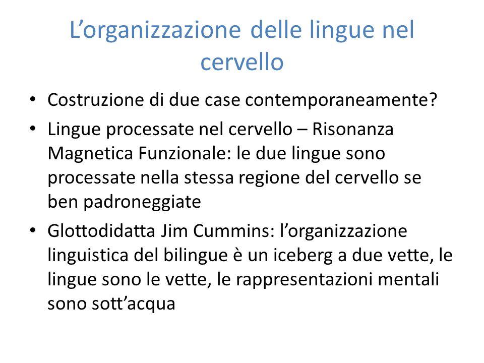 L'organizzazione delle lingue nel cervello