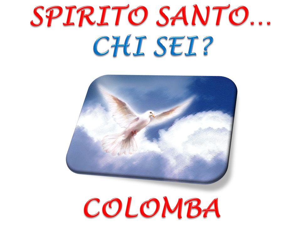 SPIRITO SANTO… CHI SEI COLOMBA