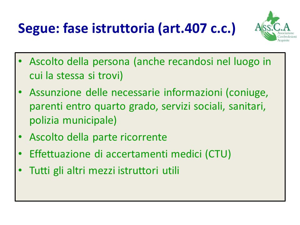 Segue: fase istruttoria (art.407 c.c.)