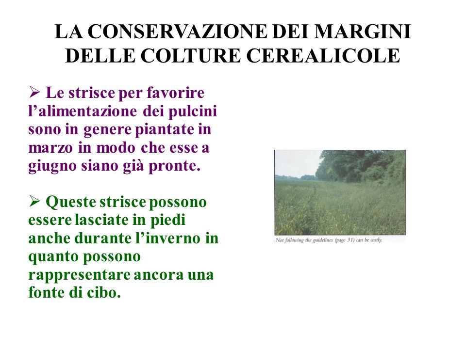 LA CONSERVAZIONE DEI MARGINI DELLE COLTURE CEREALICOLE