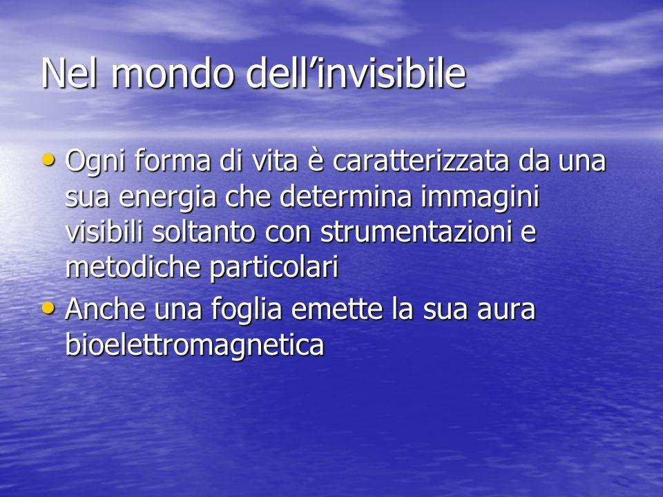 Nel mondo dell'invisibile