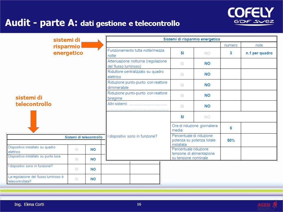 Audit - parte A: dati gestione e telecontrollo