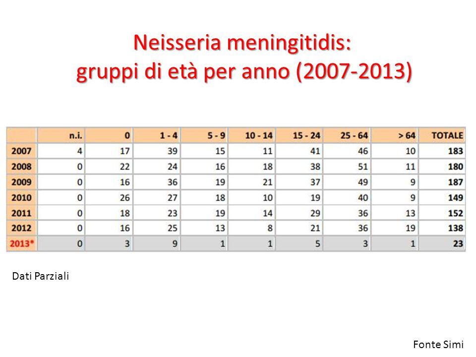 Neisseria meningitidis: gruppi di età per anno (2007-2013)