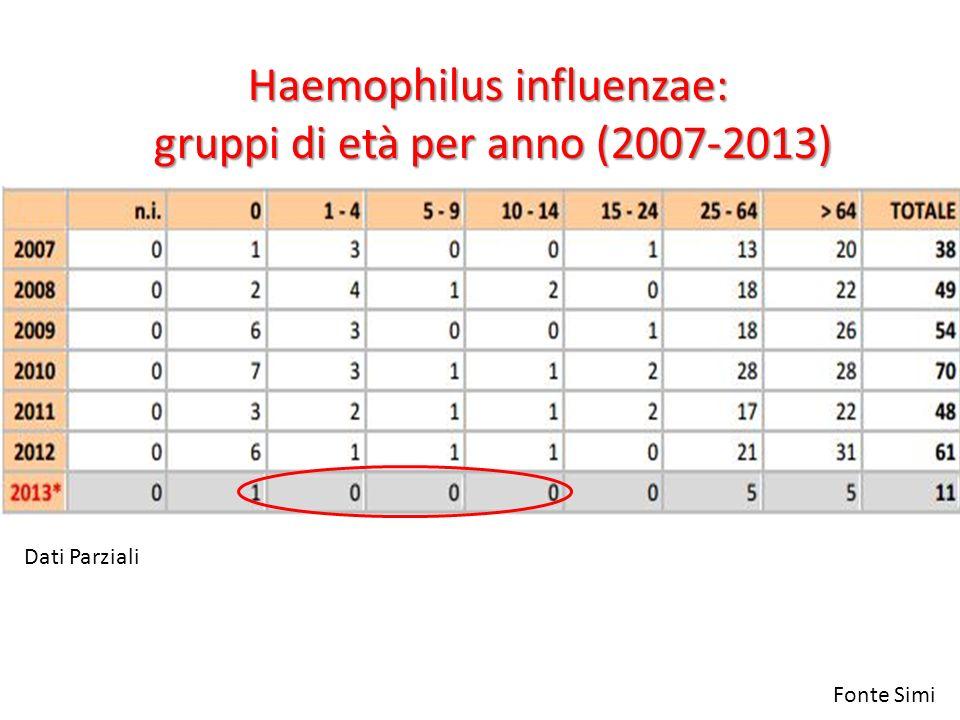Haemophilus influenzae: gruppi di età per anno (2007-2013)