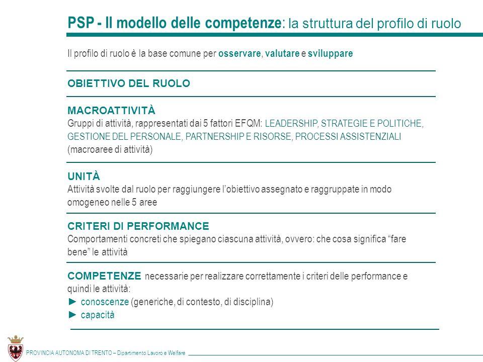 PSP - Il modello delle competenze: la struttura del profilo di ruolo