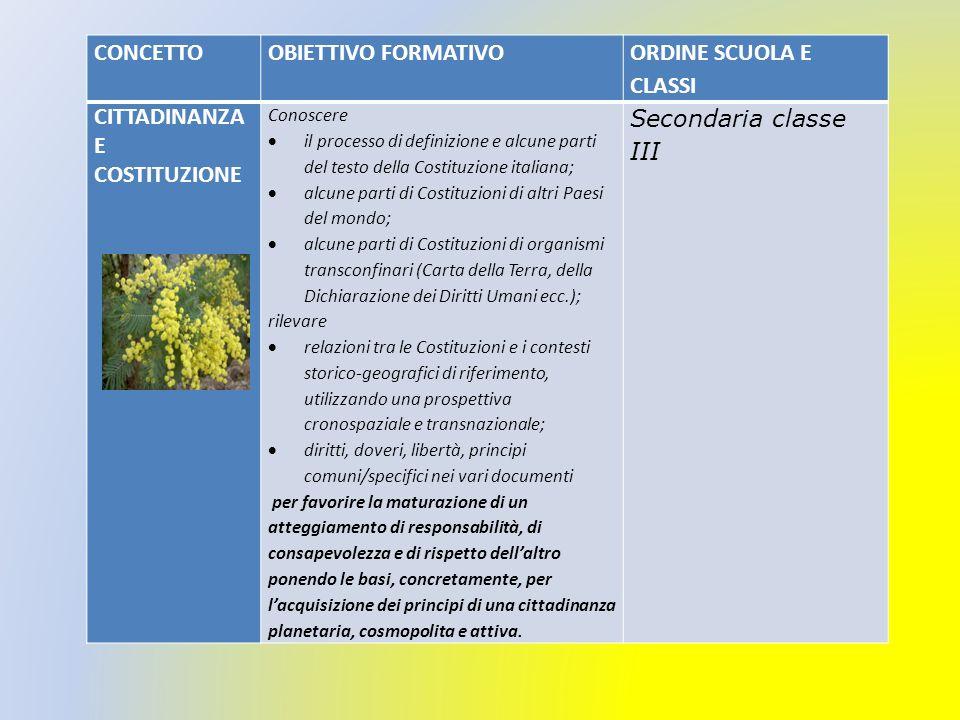 CITTADINANZA E COSTITUZIONE Secondaria classe III