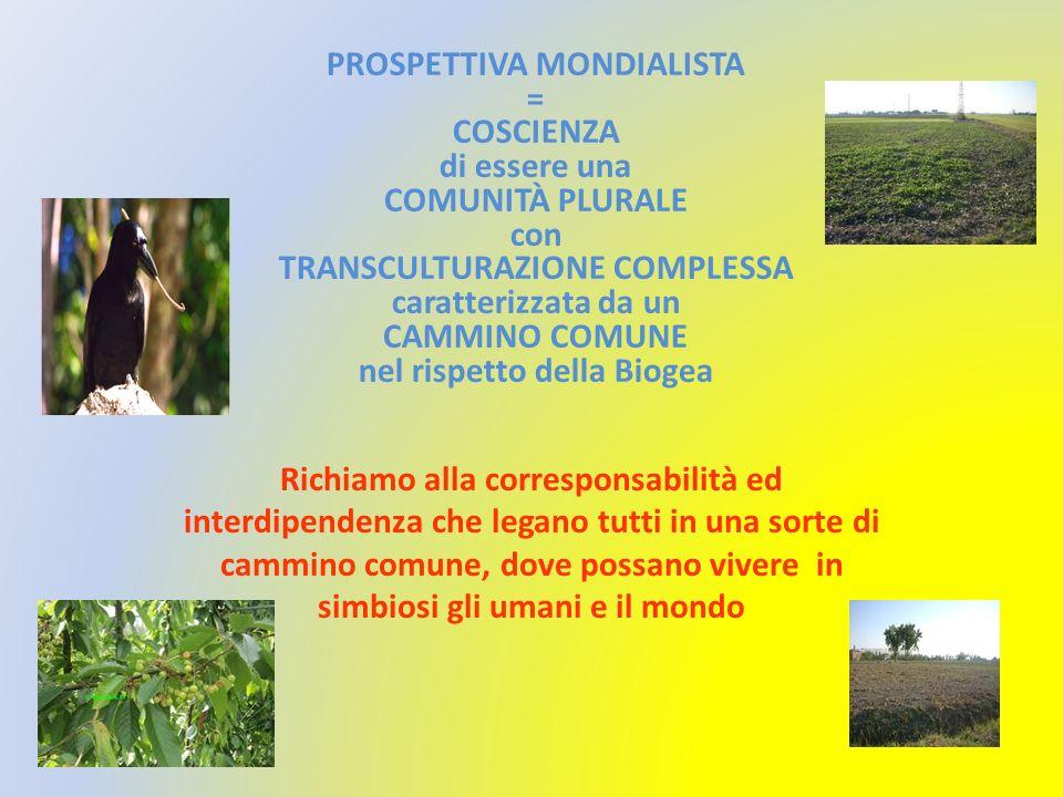 PROSPETTIVA MONDIALISTA = COSCIENZA di essere una COMUNITÀ PLURALE con TRANSCULTURAZIONE COMPLESSA caratterizzata da un CAMMINO COMUNE nel rispetto della Biogea
