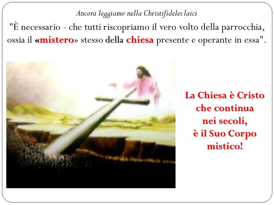 La Chiesa è Cristo che continua nei secoli,