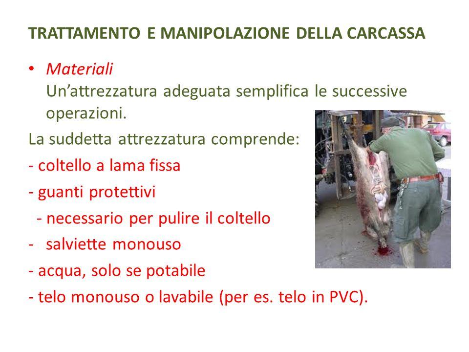 TRATTAMENTO E MANIPOLAZIONE DELLA CARCASSA