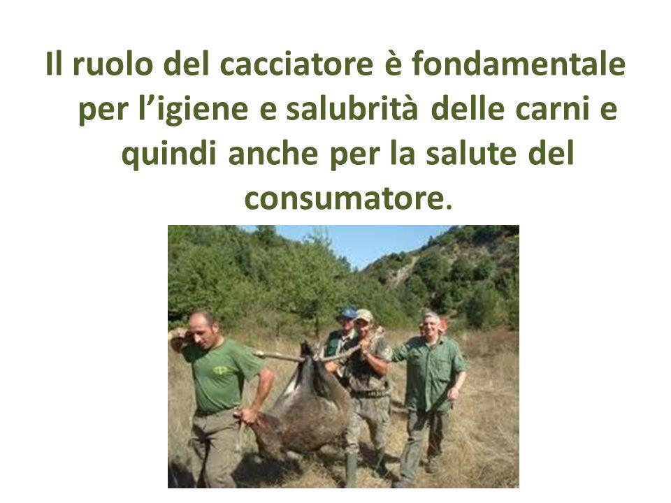 Il ruolo del cacciatore è fondamentale per l'igiene e salubrità delle carni e quindi anche per la salute del consumatore.