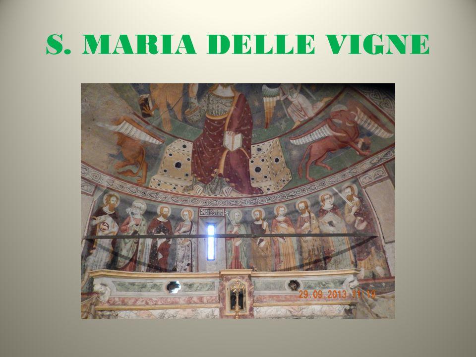 S. MARIA DELLE VIGNE